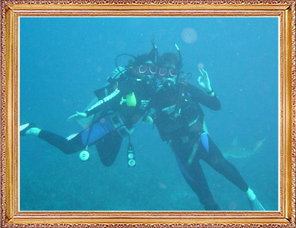 Steven-Dives-with-Sharks-1